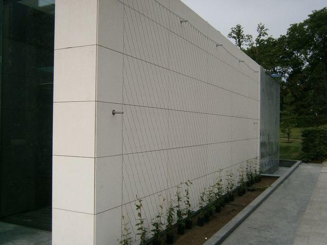 Vápencová zeď